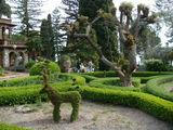 Городской парк в Таормине / Италия