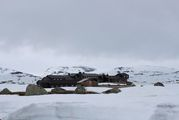 Отель Финсехитта / Норвегия
