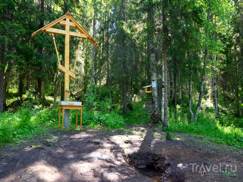 Источник в Куртяево / Фото из России