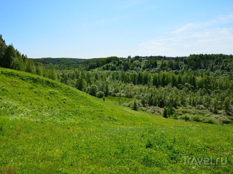 Пейзажи Архангельской области / Фото из России