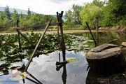 Маленькое озерцо / Украина