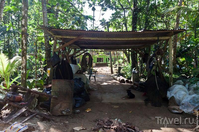 Туристический центр Нан-Мадола, Микронезия / Фото из Микронезии