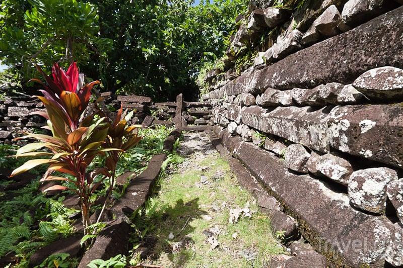 Стена города Нан-Мадол, Микронезия / Фото из Микронезии
