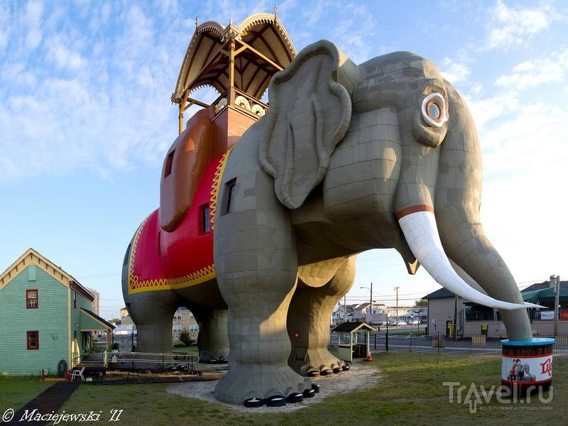 Дом в форме гигантского слона в штате Нью-Джерси / США