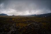 Толстый слой мха / Исландия