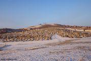 """Чимээгүй хот - """"беззвучный город"""" / Монголия"""