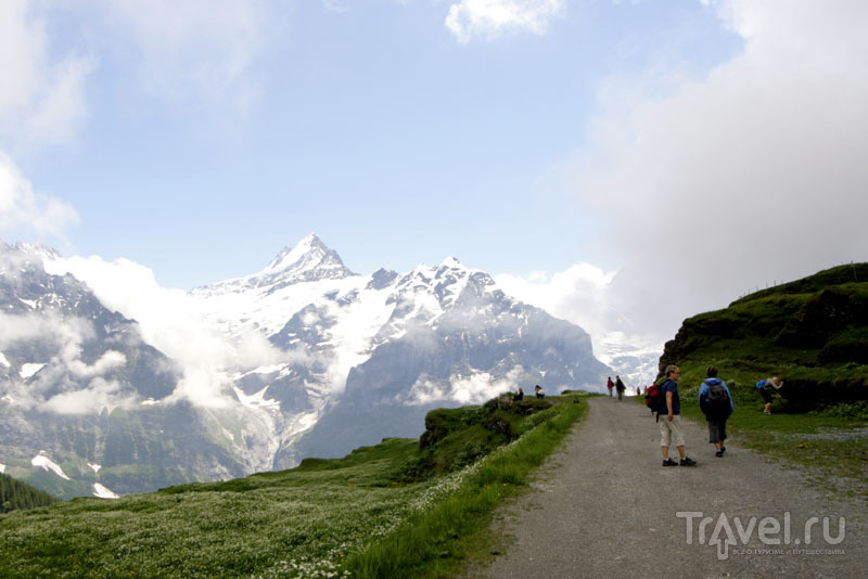 Дорога в горах Швейцарии / Фото из Швейцарии