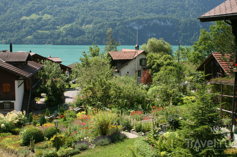 Швейцарские сады / Фото из Швейцарии