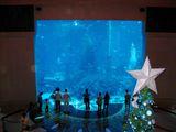 Аквариум в Atlantis the Palm / ОАЭ