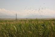 Красиво вокруг / Киргизия