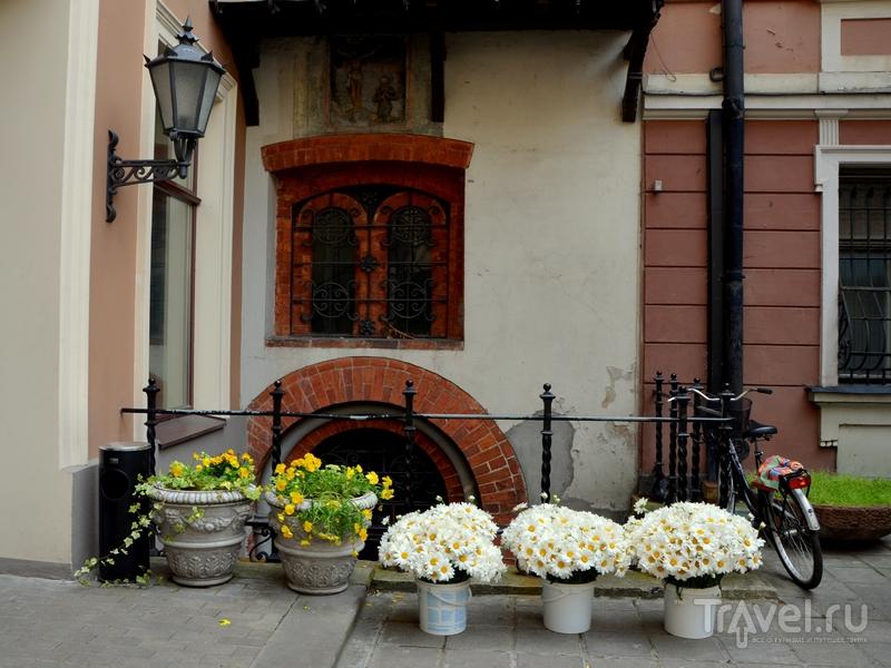 Цветы на улице Риги / Фото из Латвии