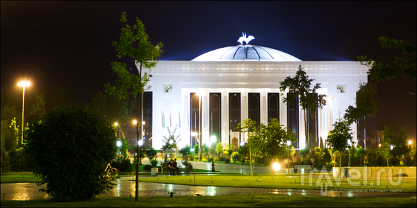 Свежая зелень / Узбекистан