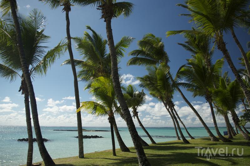 Пляж отеля One & Only Le Saint Geran на востоке Маврикия / Фото с Маврикия