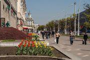 Клумба с цветами / Белоруссия