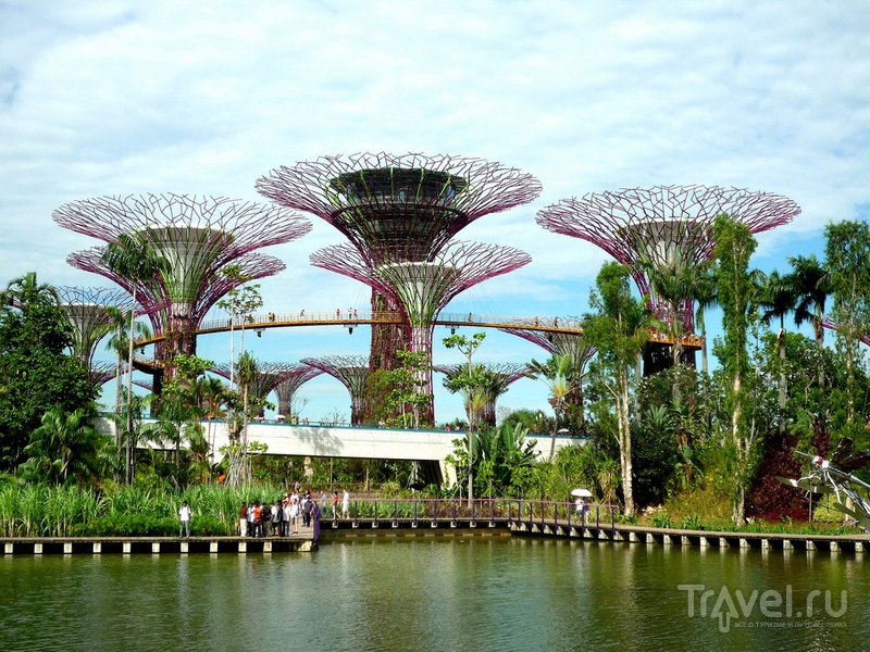 "Тропический парк ""Сады у залива"" (Gardens by the Bay) в Сингапуре / Сингапур"