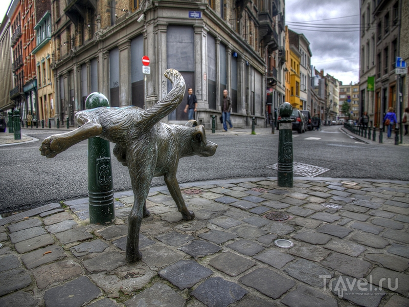Скульптура писающей собаки в Брюсселе / Бельгия