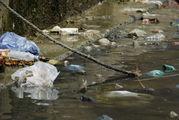 Состояние реки / Индия