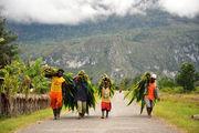 Облака лежат на горах / Папуа-Новая Гвинея