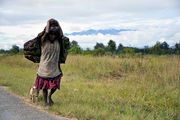 Со свинками, с сумками за спиной / Папуа-Новая Гвинея