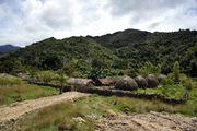 Деревня в долине Больем / Папуа-Новая Гвинея