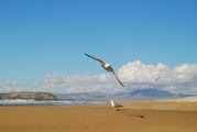 Пляж Cofete / Испания