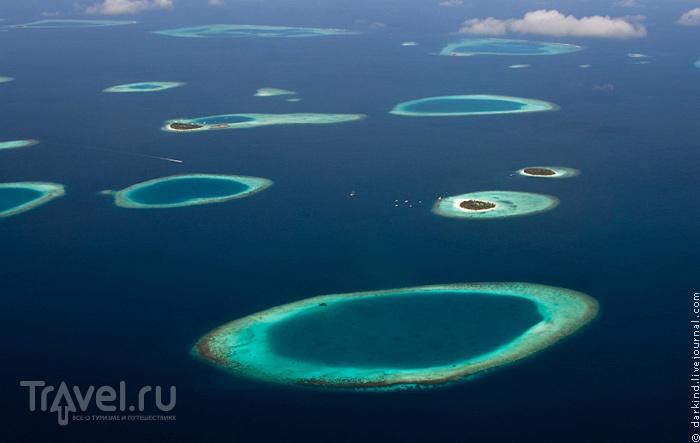 Узоры мальдивских рифов / Фото с Мальдив