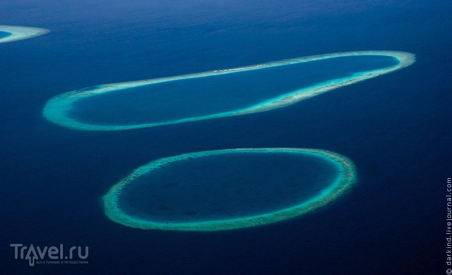 Рифы без участков суши / Фото с Мальдив