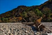 Русло, усыпанное камнями / Болгария