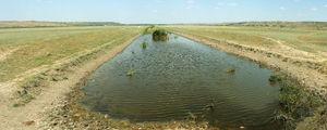 Река Большой Куяльник / Украина