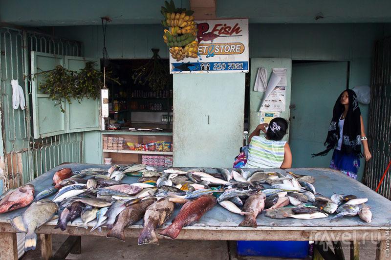 Торговля коралловыми рыбами на рынке Колониа, Микронезия / Фото из Микронезии