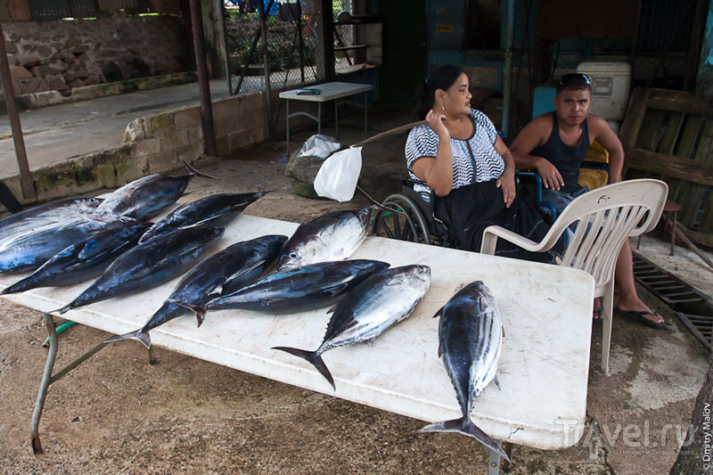 Торговля тунцом на рынке Колониа, Микронезия / Фото из Микронезии