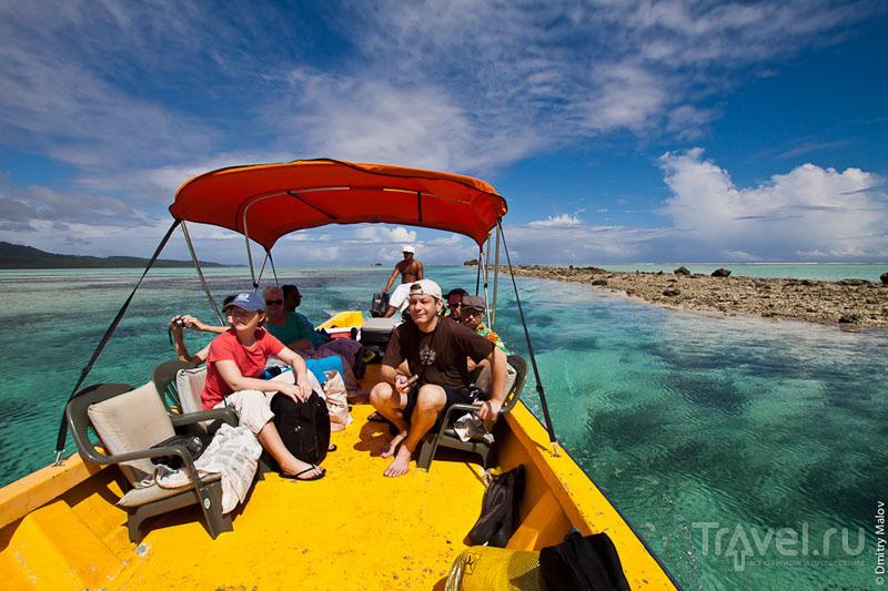 Риф вокруг острова Понапе, Микронезия / Фото из Микронезии