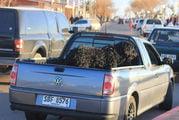 Перевозка собак / Уругвай