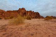 Цветущая пустыня / Иордания