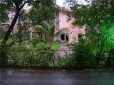 Тропический ливень / Доминикана