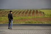 Дорога вдоль полей / Перу