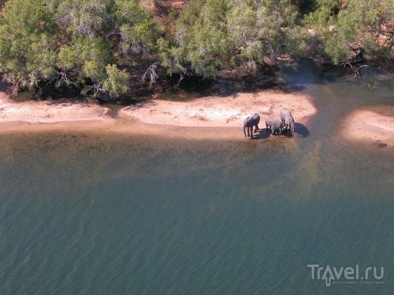 Долина реки Замбези / Замбия