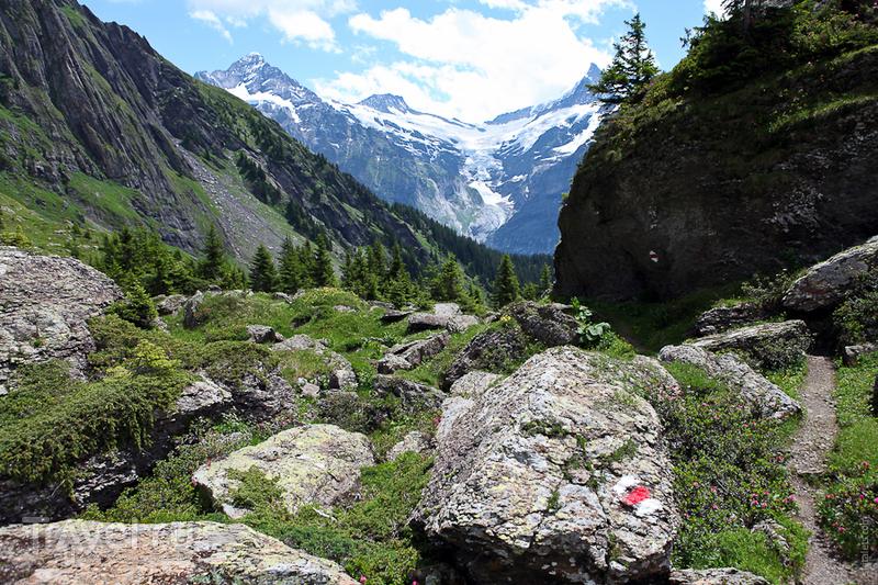 Внизу природа меняется / Швейцария