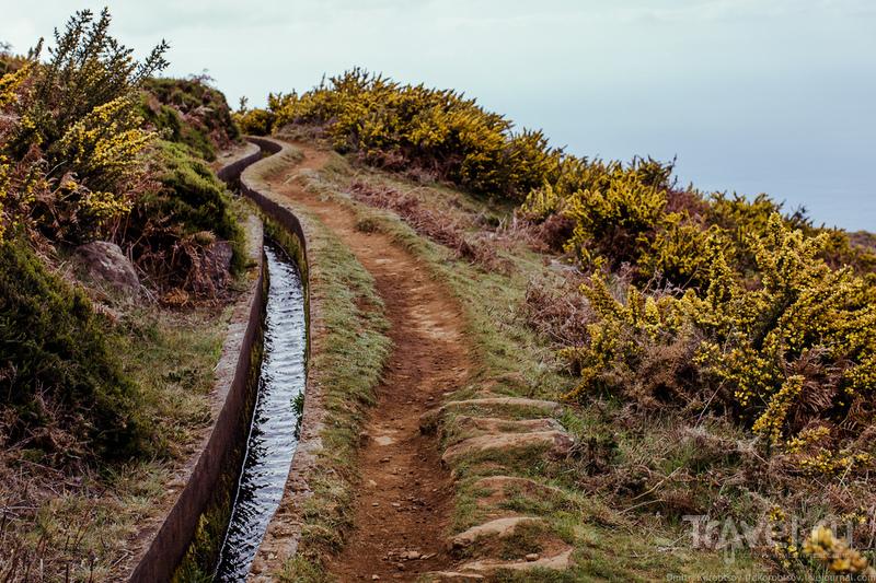 Колея с проточной горной водой / Португалия
