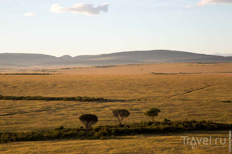 Просторы национального парка Масаи-Мара, Кения / Фото из Кении
