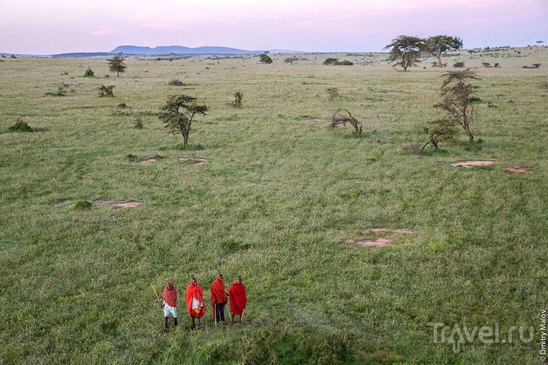 Масаи в национальном парке Масаи-Мара, Кения / Фото из Кении