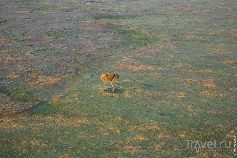 Полет над национальным парком Масаи-Мара, Кения / Фото из Кении