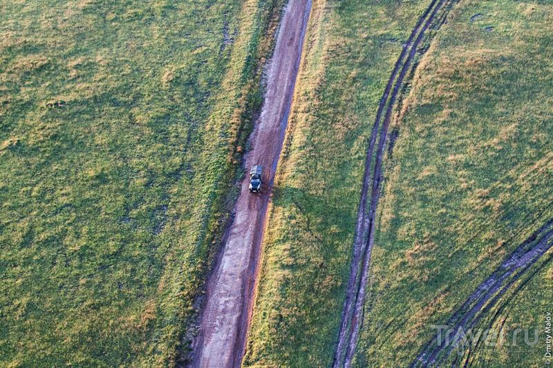 Автомобильная колея в национальном парке Масаи-Мара, Кения / Фото из Кении