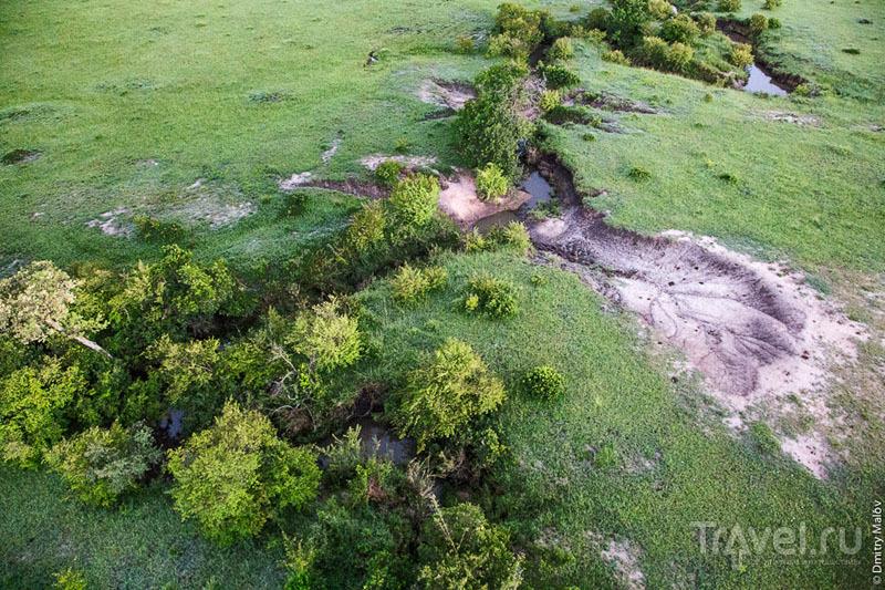 Река в национальном парке Масаи-Мара, Кения / Фото из Кении