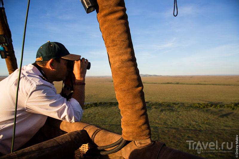 Воздухоплаватель, национальный парк Масаи-Мара, Кения / Фото из Кении