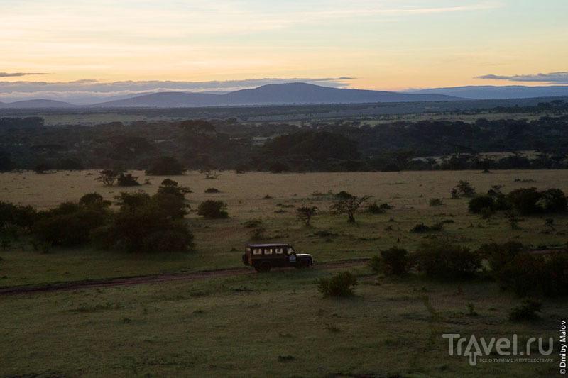 Сафари в национальном парке Масаи-Мара, Кения / Фото из Кении