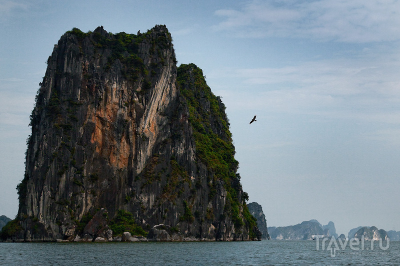 Скала и птица / Вьетнам