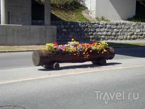 Клумба на улице / Швейцария