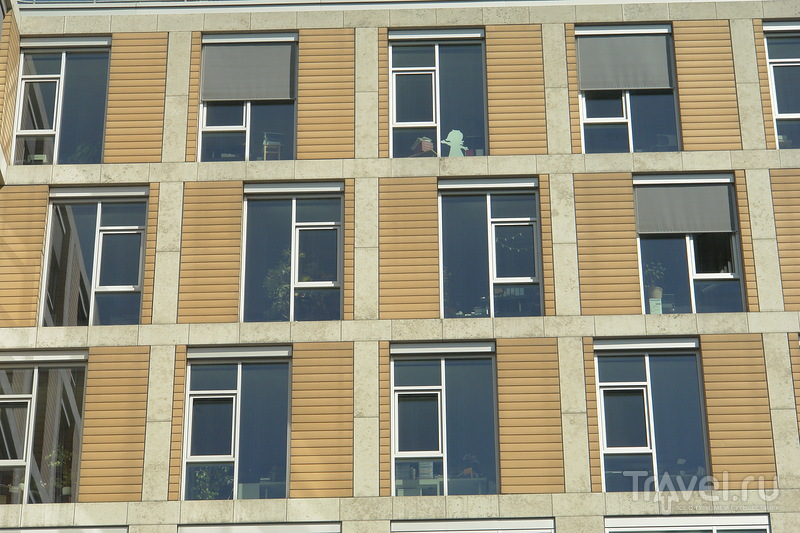 Вид на окна кабинета фрау Шустер / Германия