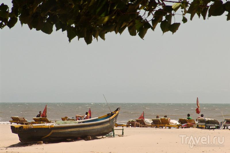 Отдыхающие на пляже / Индия
